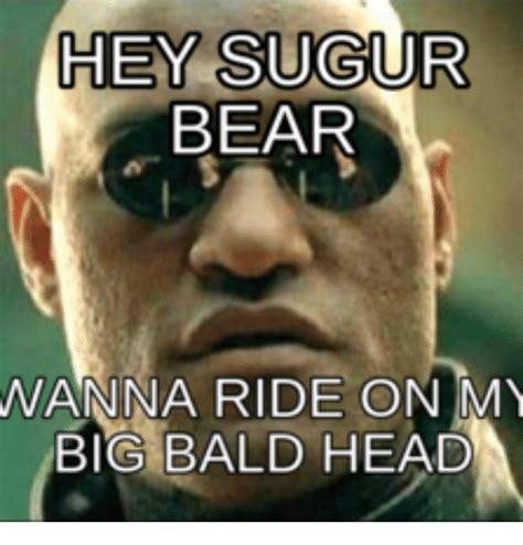 Shaved Head Meme - hey sugur bear wanna ride on my big bald head baldness