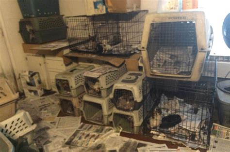 list of puppy mills in ohio humane society horrible 100 list 2017 of worst puppy