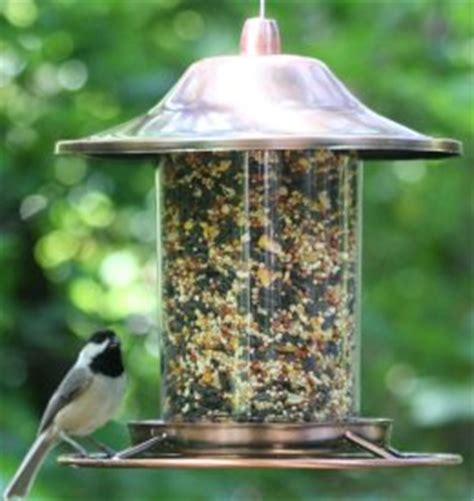 tube bird feeders top rated easy to fill and clean