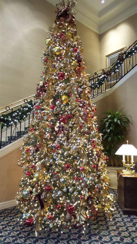 christmas tree farms around denver top 28 trees colorado springs 28 best tree farms near denver