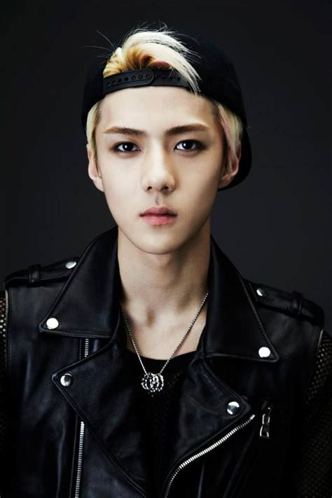 exo official wolf portraits luhan exo pinterest 49 best images about exo sehun on pinterest wolves
