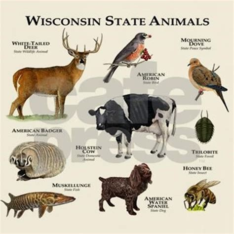 wisconsin state animals t shirt by wildlifearts2