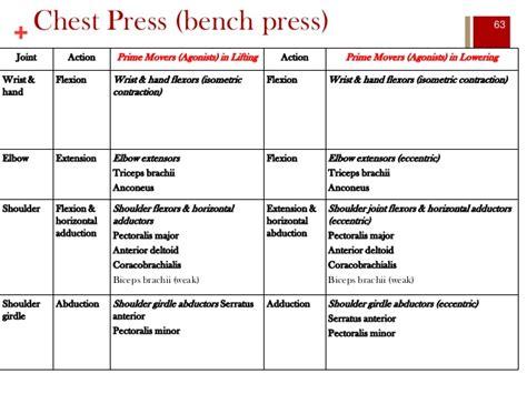 bench press movement ess 3092 week 4 student shoulder