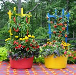How To Plant A Vegetable Garden In Your 15 Stunning Container Vegetable Garden Design Ideas Tips