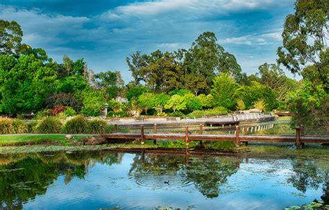 Gold Coast Botanical Gardens City Of Gold Coast Gold Coast Botanic Gardens Image Gallery