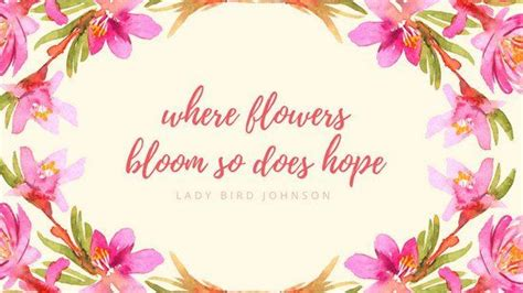 pink watercolour roses quote floral desktop wallpaper