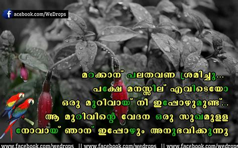 images of love failure malayalam love failer quotes