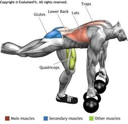 Hyperextension Bench Workouts Lats Deadlift One Leg 2 Kettlebell Excersise