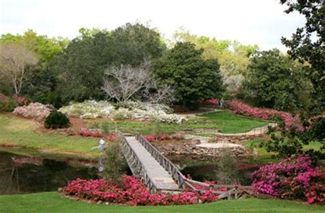 Bellingrath Gardens Mobile by Bellingrath Gardens Al Ways Up Through And