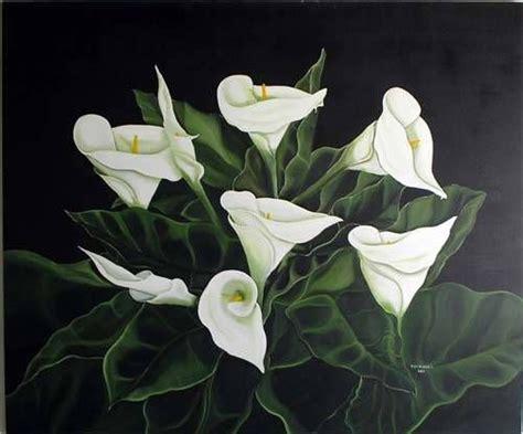 imagenes de flores alcatraces 1648 best images about lirios o alcatraces on pinterest