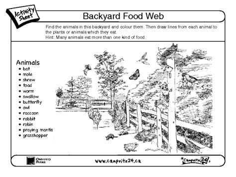 backyard food web food web worksheet worksheets tutsstar thousands of