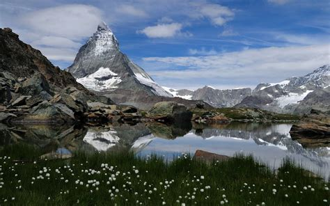 Landscape Mountains Mountain Landscape With A Lake And White Flowers