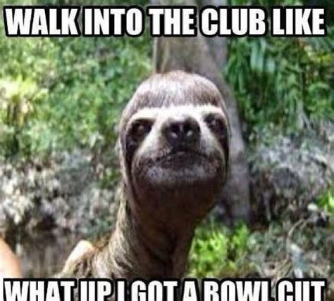 Make A Sloth Meme - the best sloth memes