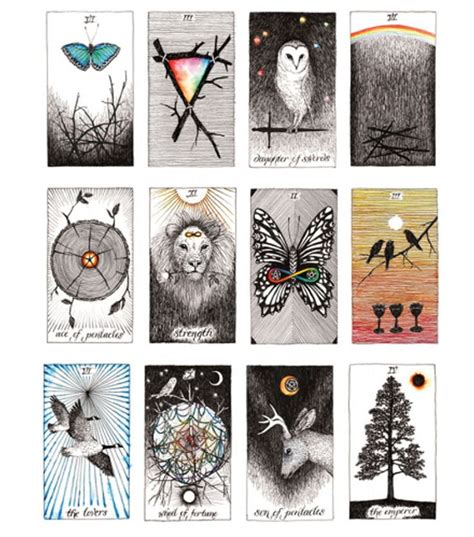 the wild unknown tarot more of the stunningly illustrated wild unknown tarot set