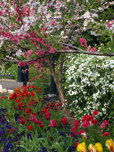 Botanic Gardens Rockhton Parking Botanical Gardens Sydney Garden Ftempo