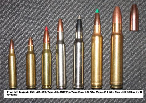 bullet caliber comparison pictures to pin on