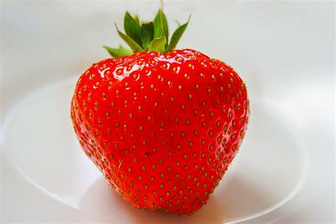 alimenti che aiutano la stitichezza 12 alimenti utili per chi soffre di stitichezza bigodino