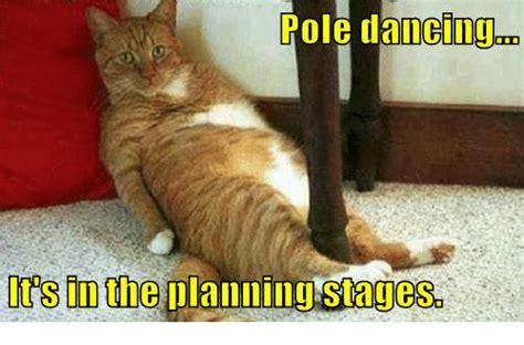 Pole Dance Meme - 25 best memes about pole dancing pole dancing memes