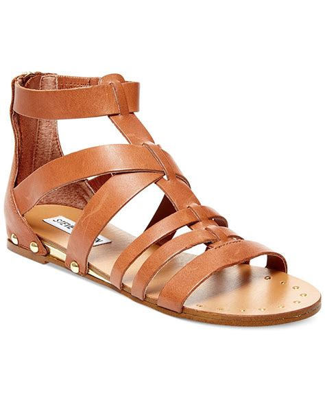 brown sandals steve madden drastik leather gladiator sandals in brown lyst