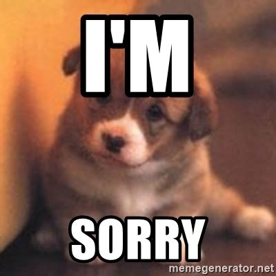 Apology Meme - i m sorry cute puppy meme generator