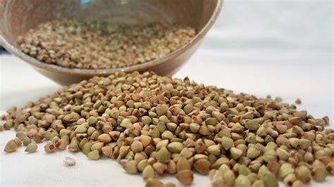 cucinare il grano saraceno grano saraceno croccante senza glutine cucina dietetica