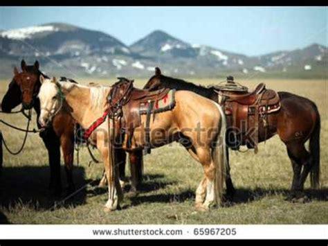 fotos de vaqueros a caballo cuarto de milla caballo vaquero youtube