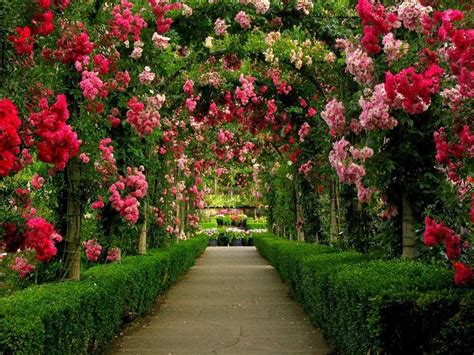 Beautiful Garden Accents Awesome Most Beautiful Gardens 6 Amazingly Beautiful