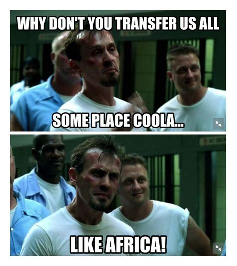 Prison Break Meme - t bag prison break meme pictures to pin on pinterest