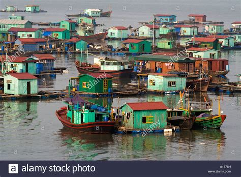 houseboat vietnam floating city houseboat community in harbor off cat ba
