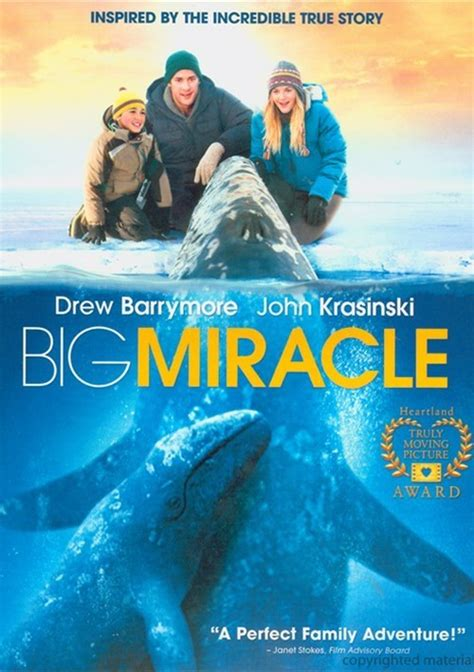 The Miracle Box Office Osn Box Office 2