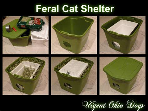 homemade cat house for outside with my work in rescue i often get helpful ideas from other rescue organizations