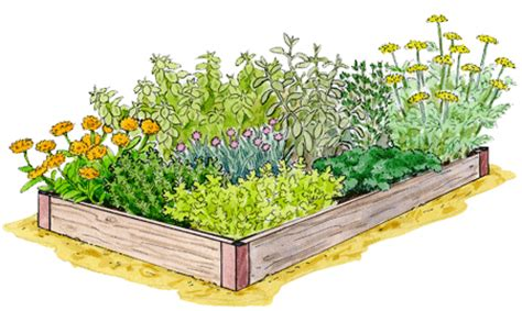 Gardeners Supply Kitchen Garden Planner How To Freeze Or Herbs Herb Garden Gardener S Supply
