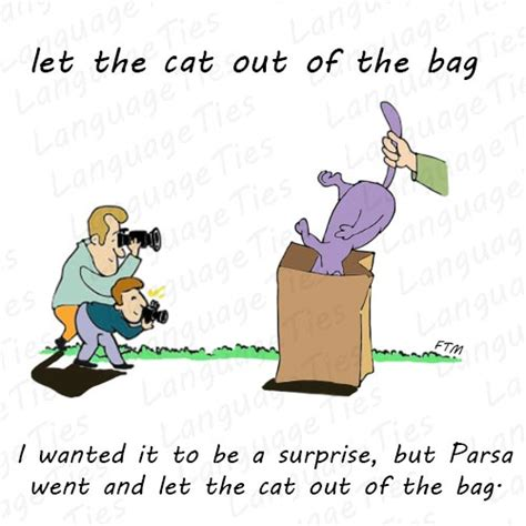 meaning image and exle of let the cat out of the bag
