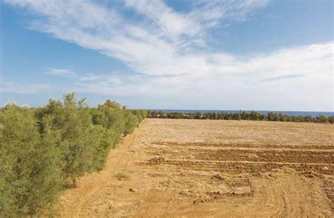 e terreni il terreno agrario e i suoi diversi aspetti ortofaidate