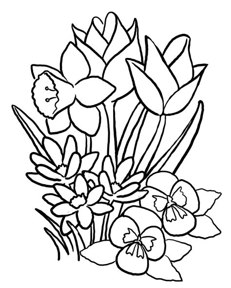 printable flowers in color free printable flower coloring pages for kids best