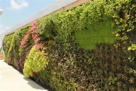 imagenes de jardines verticales caseros como hacer muros verdes y jardines verticales taringa