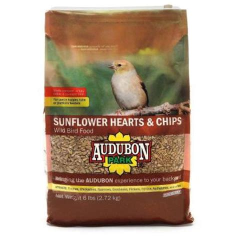 audubon park 6 lb sunflower hearts wild bird food 12184
