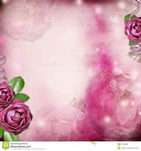 Romantic background with rose royalty free stock photos image