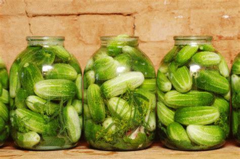 Handmade Pickles - conserve fatte in casa i cetriolini sotto aceto