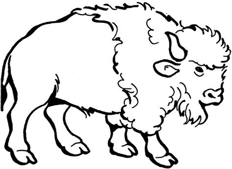 Nice American Bison Coloring Page For Kids Coloring Point Bison Coloring Page