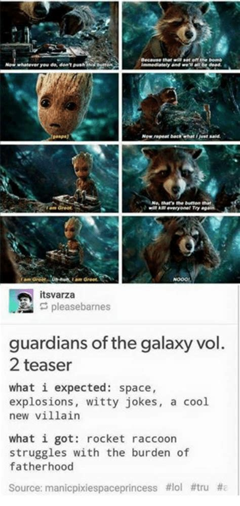 Guardians Of The Galaxy Memes - funny raccoon memes of 2017 on sizzle cute