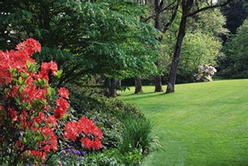 cutting edge lawn and landscaping landscaping and lawn care hollister california