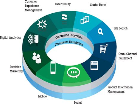 ecommerce ecosystem diagram ibm b2b commerce one platform all routes to market in