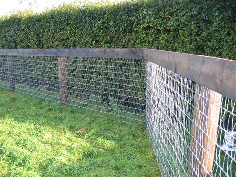 fence wire declan landy v mesh fence