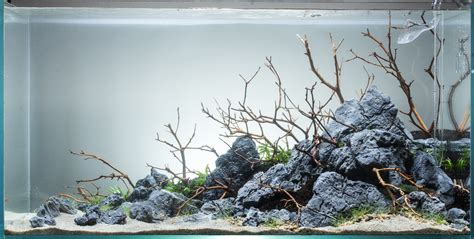 how to set up an aquascape how to set up an aquascape aquascape no 7 ada 90p seaside update 11 8 the planted tank