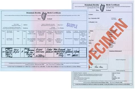 sle of birth certificate birth certificate affidavit ireland images certificate