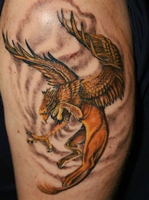 griffin tattoo griffin design ideas tatoos griffin
