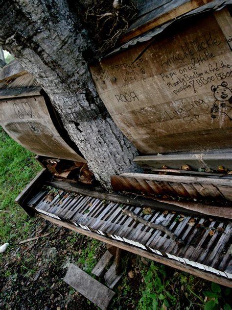 tree piano piano tree 1 by crackoala on deviantart