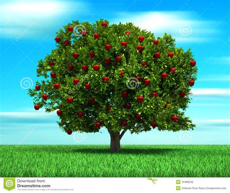 imagenes surrealistas de arboles 193 rbol con la manzana imagen de archivo libre de regal 237 as