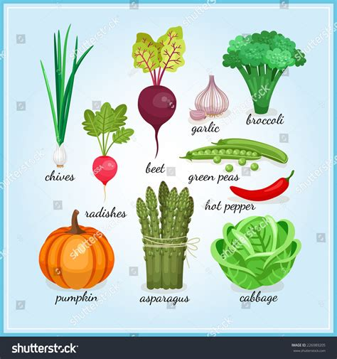 6 vegetables name vegetables clipart with names clipartxtras